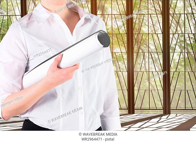 architect is holding a plan against windows background