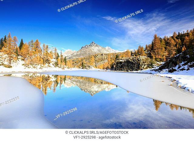 Rocky peaks and larches reflected in the frozen Lake Mufulè Malenco Valley Lombardy province of Sondrio Valtellina Italy Europe