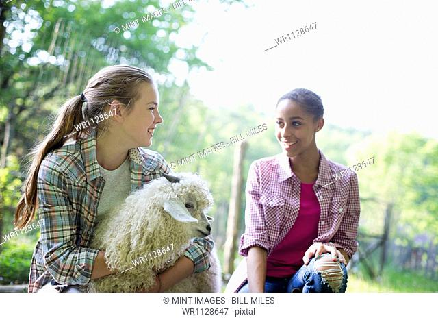 Two young girls on the farm, outdoors. one with her arms around a very fluffy haired angora goat