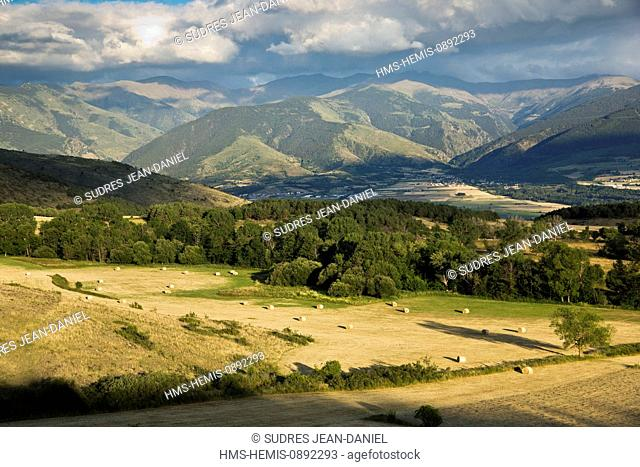 France, Pyrenees Orientales, Cerdanya Region, Font Romeu, haymaking on the Cerdan plateau and the Catalan Pyrenees
