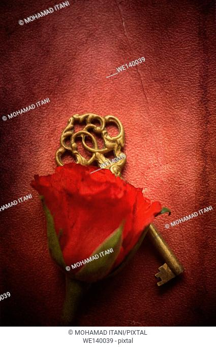 Red rose and a brass skeleton key