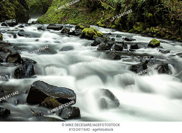 River rapids stream over river rock boulders below a waterfall in the Pacific Northwest