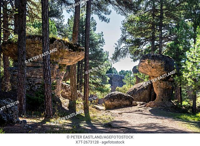 Eroded limestone outcrops in La Ciudad Encantada, The enchanted City, Park in the Serrania de Cuenca, Castilla-la Mancha, Central Spain
