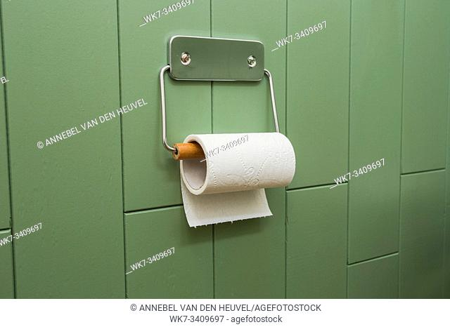A white roll of soft toilet paper neatly hanging on a modern chrome holder on a green bathroom wall. modern design