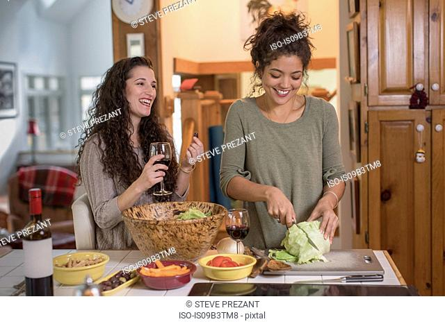 Two female friends preparing salad at kitchen counter