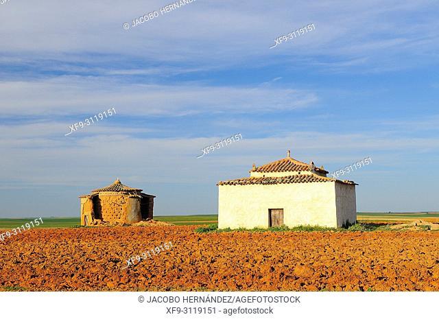 Dovecotes. Villarrín de Campos. Tierra de Campos region. Zamora province. Castilla y León. Spain