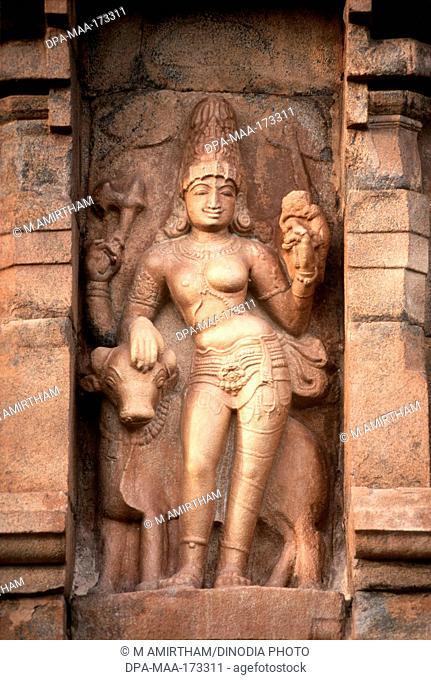 Ardhanarishvara with bull on brihadeshwara temple , Gangaikonda Cholapuram , Tamil Nadu , India