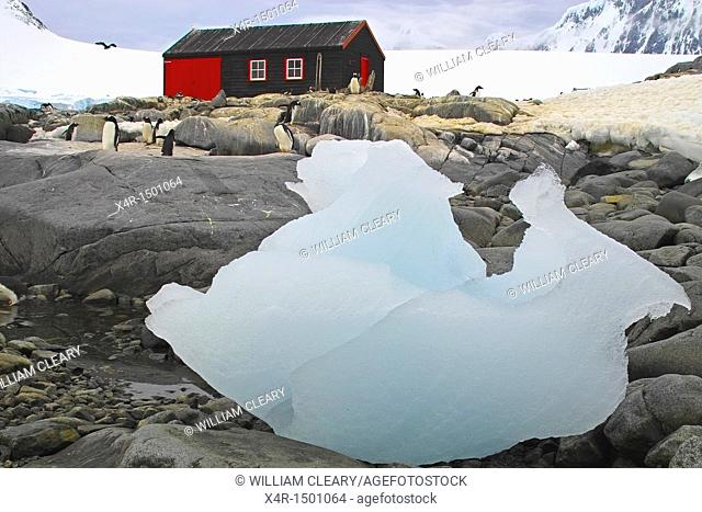 Naturally sculpted ice lies on the rocks at Port Lockroy, Antarctica