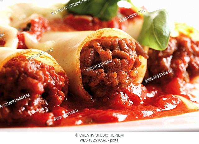 Cannelloni with bolognese sauce, close up
