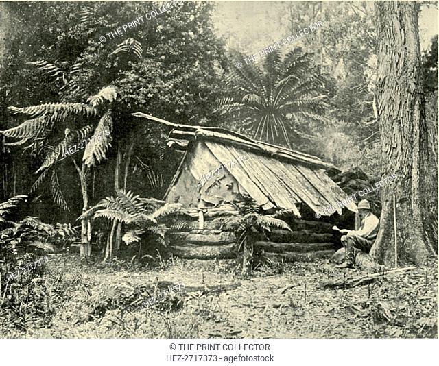 'Bush Hut, Dandenong Ranges, Victoria', 1901. Creator: Unknown