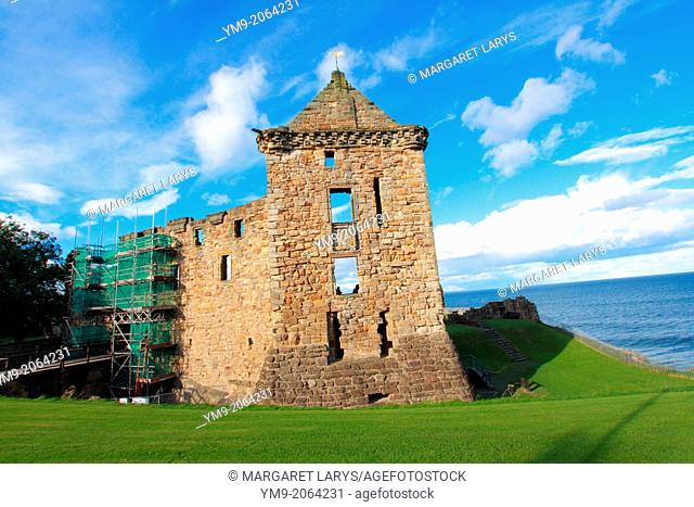 Ruins of St Andrews castle, St Andrews, Scotland, Fife, Great Britain, Europe