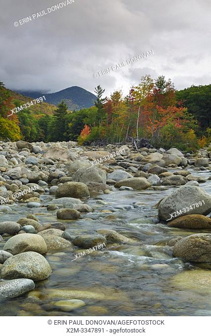 Autumn foliage along the East Branch of the Pemigewasset River in Lincoln, New Hampshire during the autumn months