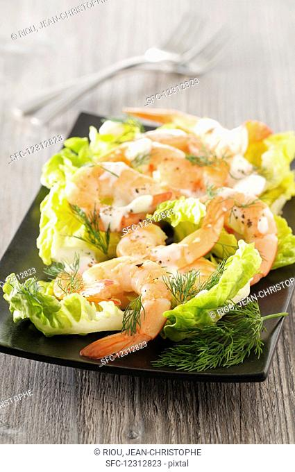 Prawn salad with dill