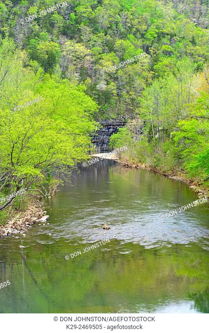 Spring forest along the Buffalo River. Ponca access. , Buffalo National River, Arkansas, USA