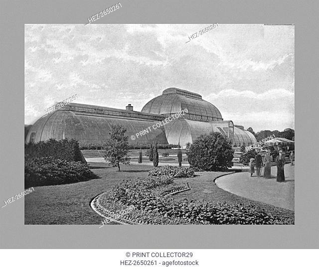 The Great Palm House, Kew Gardens, London, c1900. Artists: Decimus Burton, York & Son
