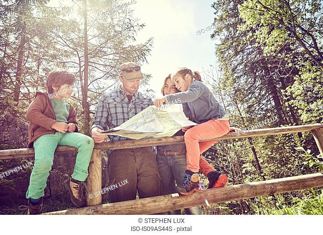 Family in forest, looking at map, low angle view