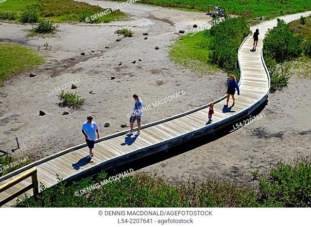 Walking Trail Boardwalk Robinson Preserve Nature Bradenton Florida FL US USA