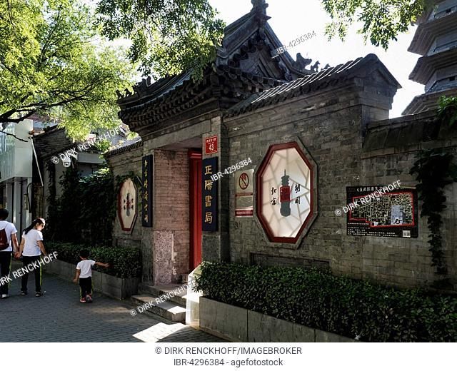 Pagoda of Monk Wansong, Beijing, China