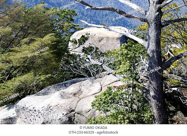 Giant rocks on the peak of Mt. Mizen, Miyajima Island, Japan