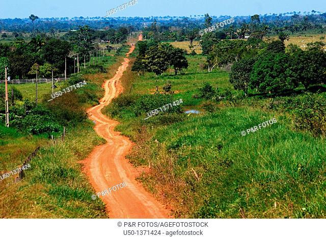 View of a earth road in Amazon region Ramal Nabor Júnior, Projeto de Assentamento Pedro Peixoto, Senador Guiomard, Acre, Brazil, 2009