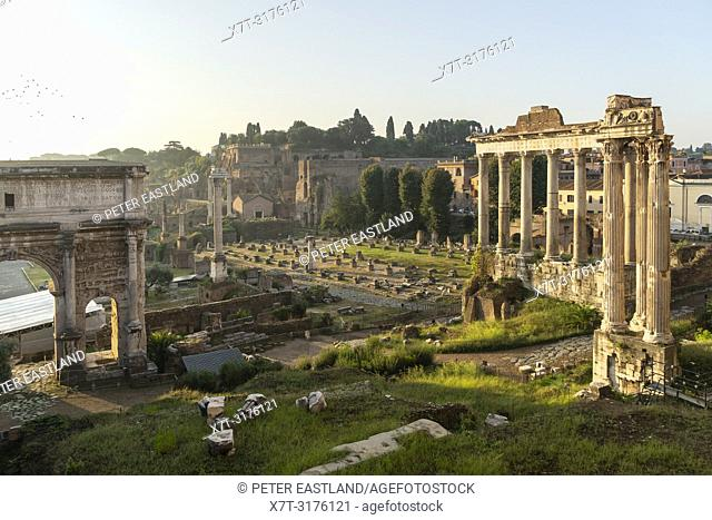 Looking across The Roman Forum at dawn, from the Capitoline Hill, with the temple of saturn in the foreground, Rome, Italy