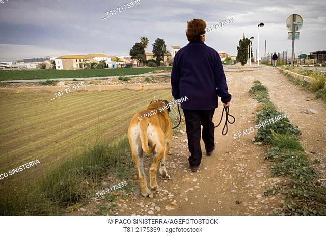 Woman walking the dog in the garden of Alboraya, Valencia, Spain