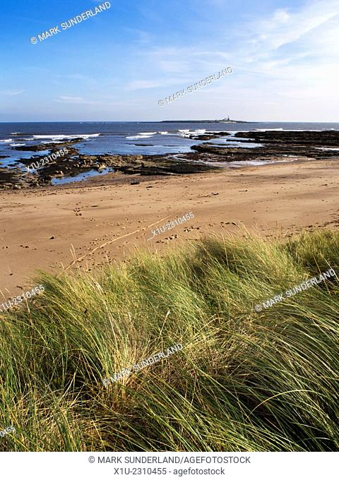 Coquet Island from the Beach at Amble by the Sea Northumberland England