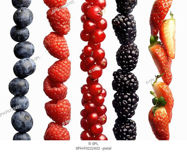 Berries in a row