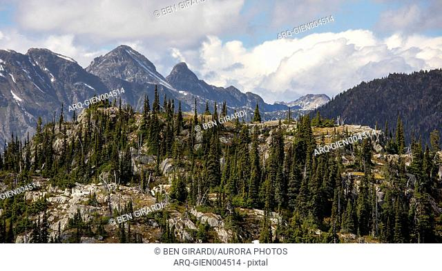 A hill side covered with trees is seen in a foreground as high mountain peaks are seen in the background. This is a popular area for backpacking due to its...