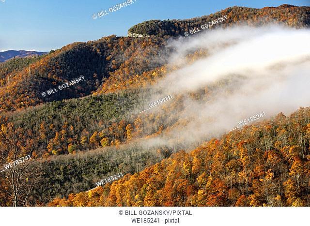 Fall color on Blue Ridge Parkway, near Asheville, North Carolina, USA