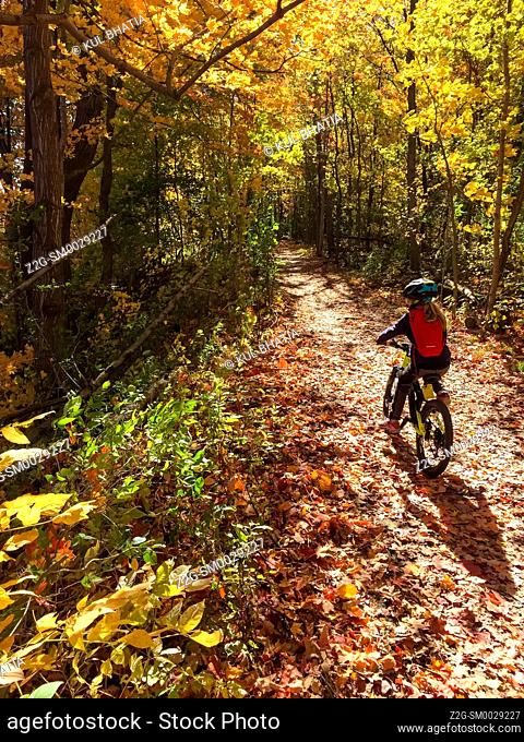 A young cyclist riding a bike on a trail in autumn, Ontario, Canada. Trees show beautiful gold, yellow, and orange hues for a few weeks at this time of the year