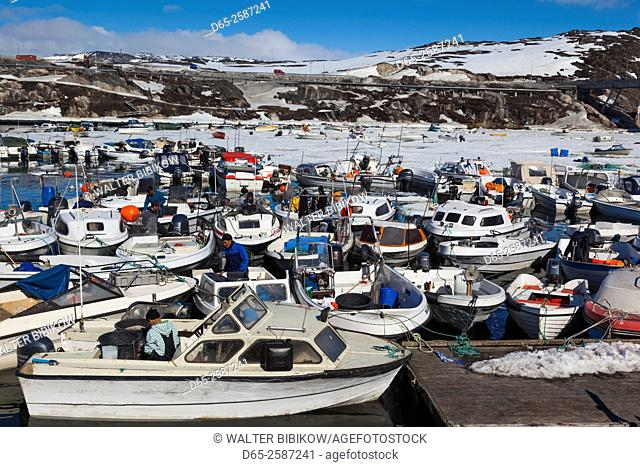 Greenland, Disko Bay, Ilulissat, town harbor, elevated view