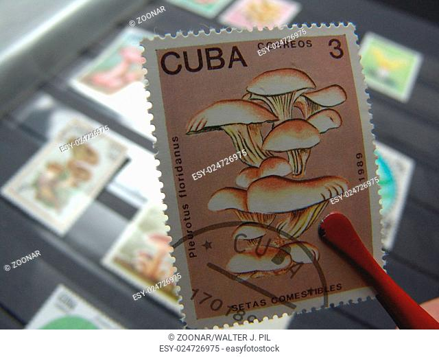 Stamp albums Stock Photos and Images | age fotostock