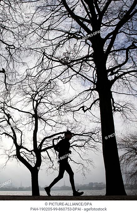 05 February 2019, Hamburg: A jogger runs under bare trees on the Outer Alster. Photo: Christian Charisius/dpa. - Hamburg/Hamburg/Germany