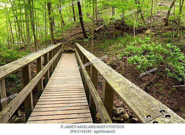 A wooden bridge crossing Tiffany Creek in Tiffany Falls Conservation Area, Ancaster, Ontario, Canada