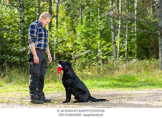 Dog owner trains his labrador retriever on outdoor, horizon format