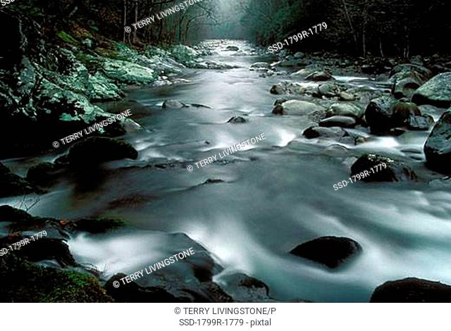 Water flowing through rocks, Little Pigeon River, Great Smoky Mountains National Park, Tennessee, USA