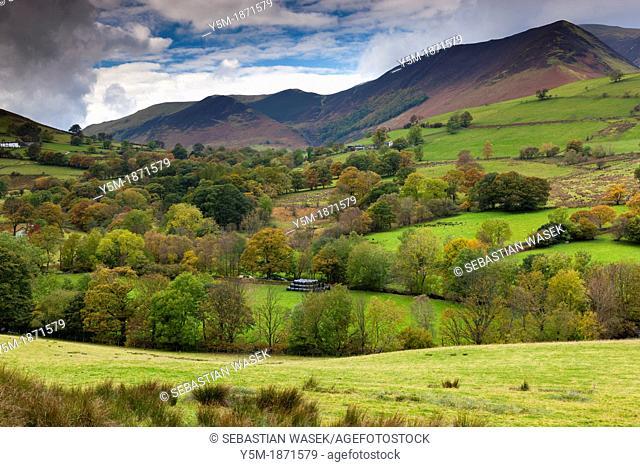 Keskadale and Derwent Fells near Keswick, Lake District National Park, Cumbria, England, UK, Europe