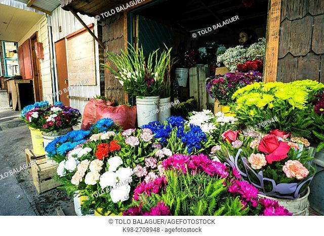 floristeria, mercadillo artesanal de Angelmó, Puerto Montt , provincia de Llanquihue, región de Los Lagos. Patagonia, República de Chile,América del Sur