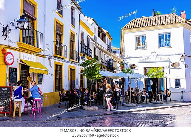 Lively street in the historic center. Córdoba, Andalusia, Spain, Europe