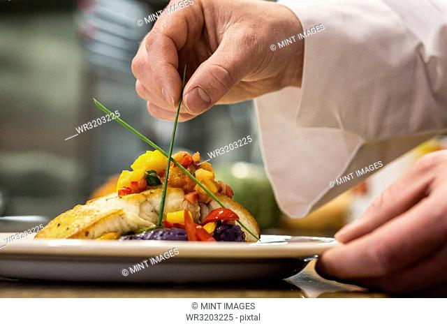 A closeup of the hands of a chef putting the final dressing on a plate of fish in a commercial kitchen