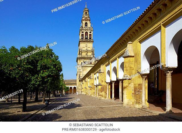 Facade of the Mezquita Catedral, Cordoba, Andalusia, Spain, Europe / Fassade der Mezquita-Catedral, Cordoba, Andalusien, Spanien, Europa