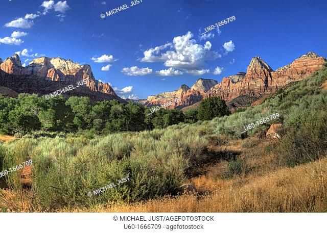 Sheer canyon walls and desert scrub make up Zion Canyon as seen from just outside Zion National Park,Utah