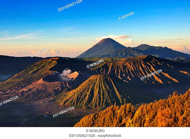 Mount Bromo volcano during sunrise the magnificent view of Mt. Bromo located in Bromo Tengger Semeru National Park East Java Indonesia
