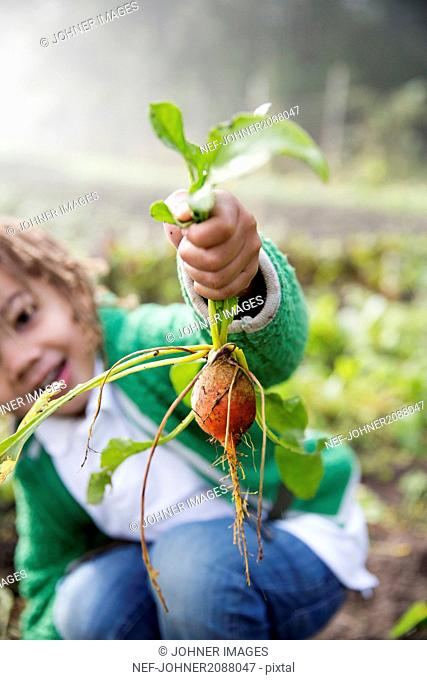 Girl holding turnip in hand