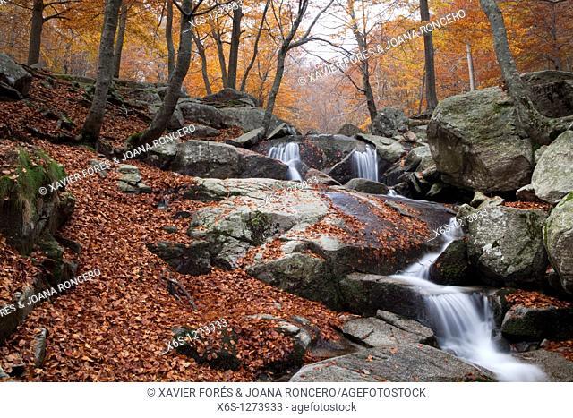 Santa Fe lake, Natural Park of Montseny, Barcelona, Spain