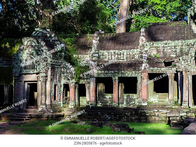 Ta Prom temple, Angkor, Cambodia, South East Asia, Angkor Thom Area, Siem Rep