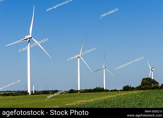 Landscape of energy efficient wind turbine at the countryside near Tarariras, Colonia