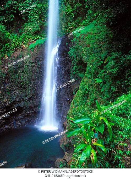 Annandale Waterfall, Dominica, West Indies