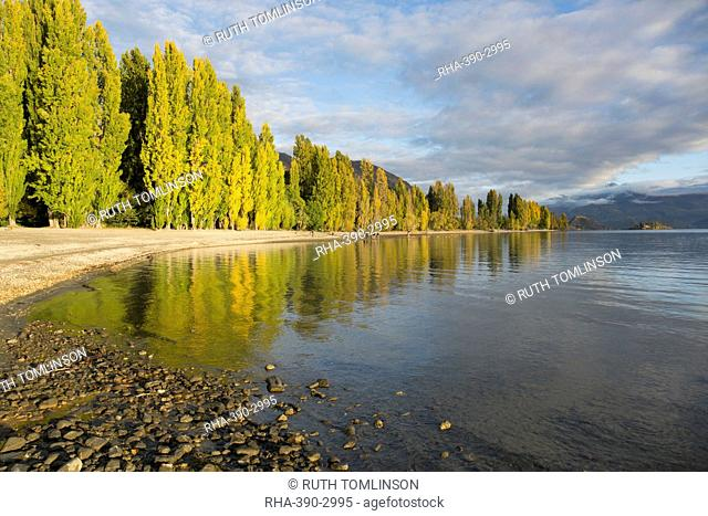 View along the shore of tranquil Lake Wanaka, autumn, Roys Bay, Wanaka, Queenstown-Lakes district, Otago, South Island, New Zealand, Pacific